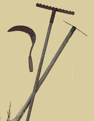 pallana instrumento para cosechar quechua